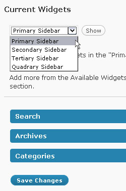 Selecting your widget section